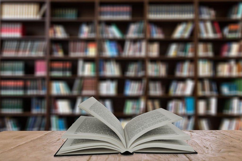 KIECKA I KRYNOLINA – książka dla miłośników dobrych historii